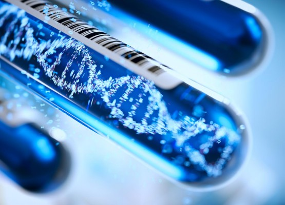 THE NATIONAL CANCER INSTITUTE REGINA ELENA, IN COLLABORATION WITH EUROFINS GENOMA GROUP LABORATORIES, SHOWS HOW LIQUID BIOPSY IN COLON CANCER CAN PROVIDE COMPLEMENTARY ANSWERS TO THOSE OF OTHER BIOLOGICAL TESTS AND IMPROVE THE CURRENT DIAGNOSTIC STRATEGIES.